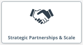 Strategic Partnerships & Scale
